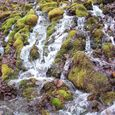 Seasonal Snowmelt Stream