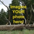 See Your Photo on EPOD!