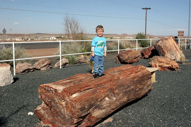 20091010 – Saturday - Petrified Forest