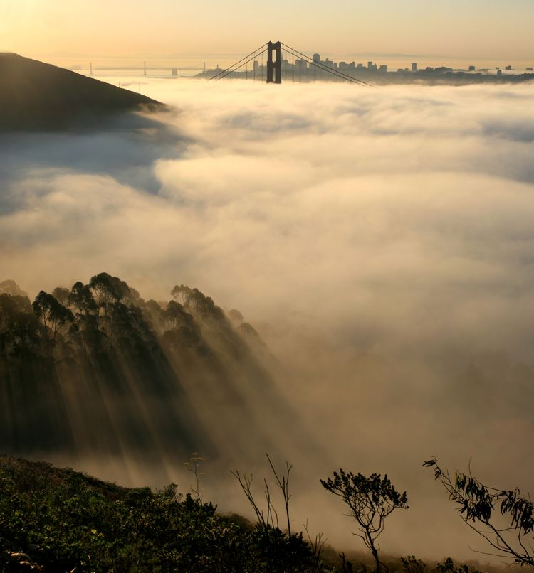 20091119 – Thursday - Fog, San Francisco Skyline and Crepuscular Rays