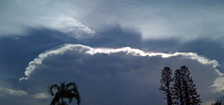 Fla cloud top
