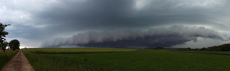 Badmegen_shelfcloud