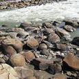 Concretions on the Athabasca River
