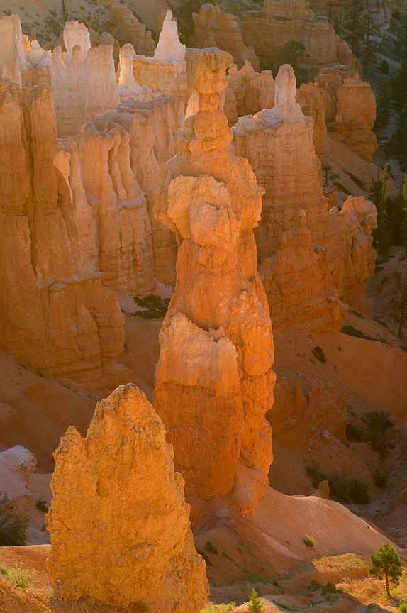 Bryce Canyon 062811_Thor_864_3 (2)