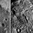 Antlions and Vesta