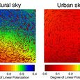 Polarization of the Night Sky In and Outside an Urban Area