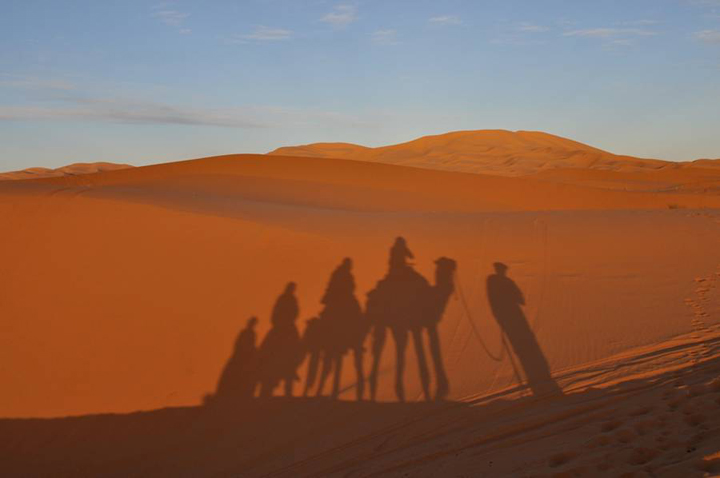 Camel_shadow_morroco