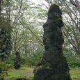 Lava Tree State Monument, Hawaii