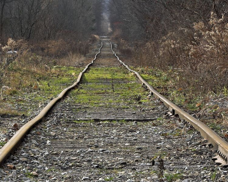 Railroad Tracks~Java Center NY~120411