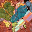 Encore - Glomerocryst Photomicrograph