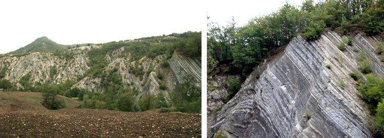 Angled Outcrops of Foreste Casentinesi