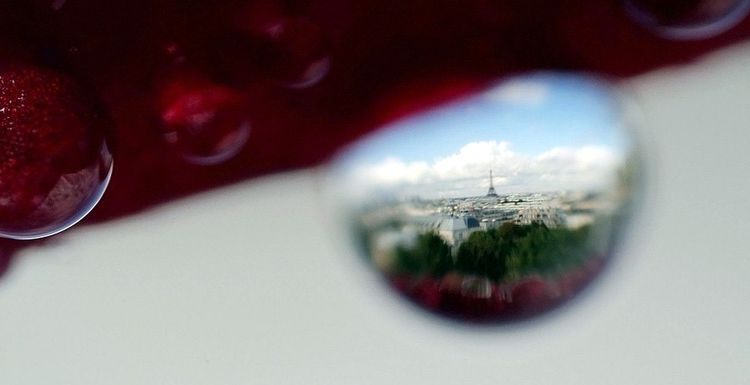 Paris Viewed Through a Drop of Water2