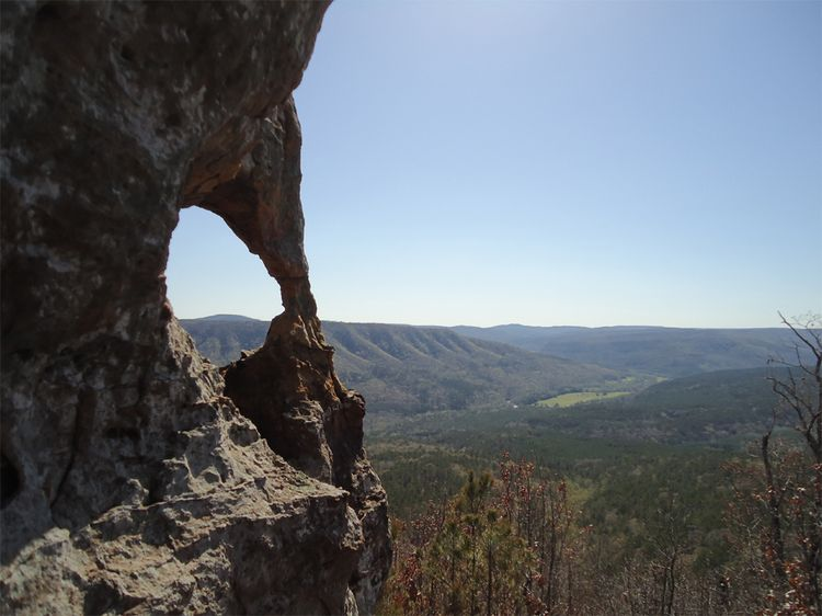 Flying Buttress Formation