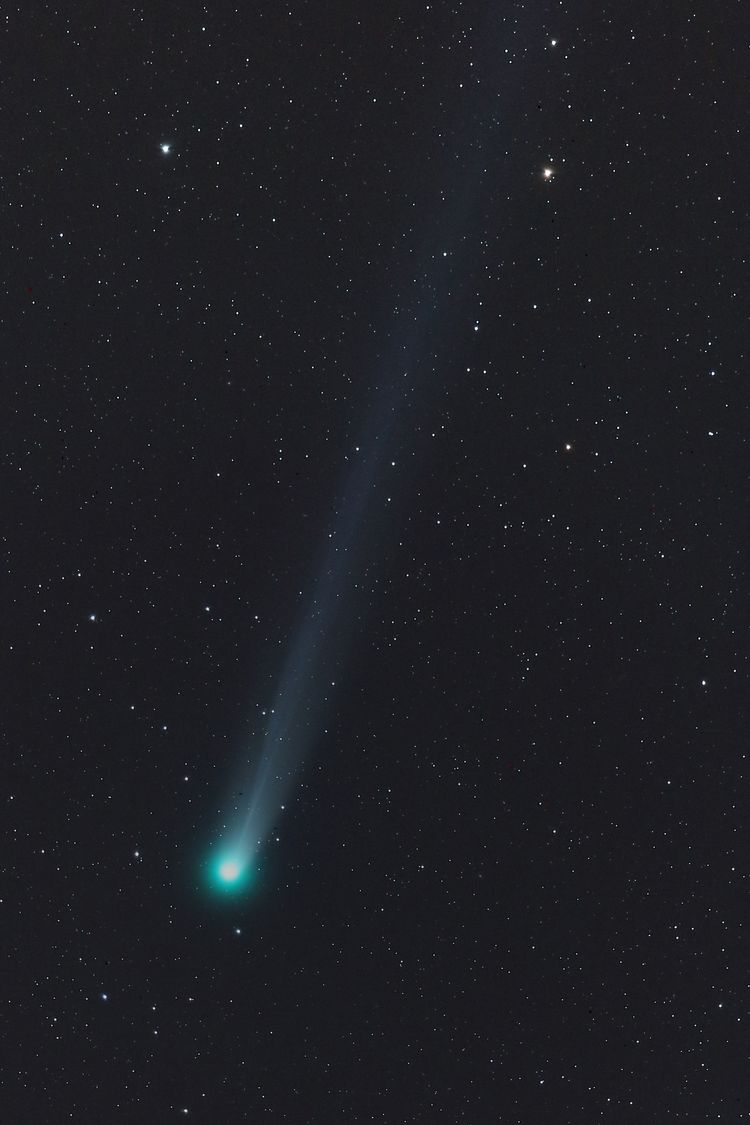 Lovejoy8dec13 (2)