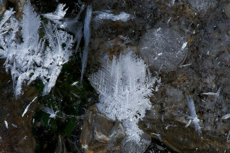 Ice crystals 010114 2 013 720 1000