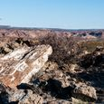 Petrified Forest of Patagonia