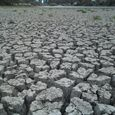 Laguna Lake Drying Up