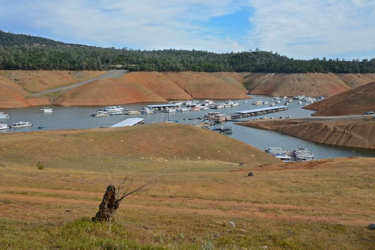 Lake OrovilleDSC_0486