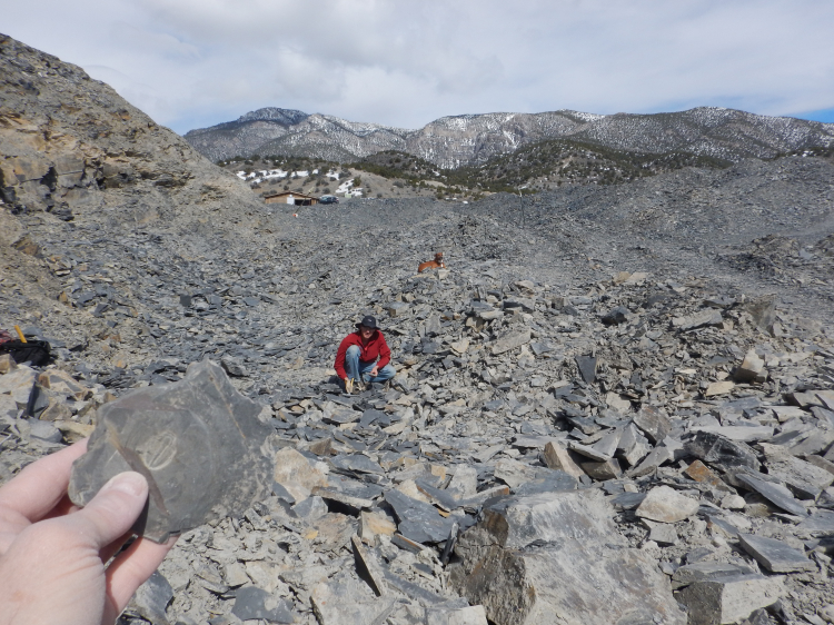 Utah Apr 2017-Delta and Trilobite digging (10)