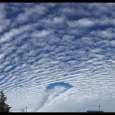 Hole Punch Cloud in Altocumulus Cloud Deck