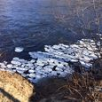 Pancake Ice on the Androscoggin River in New Hampshire