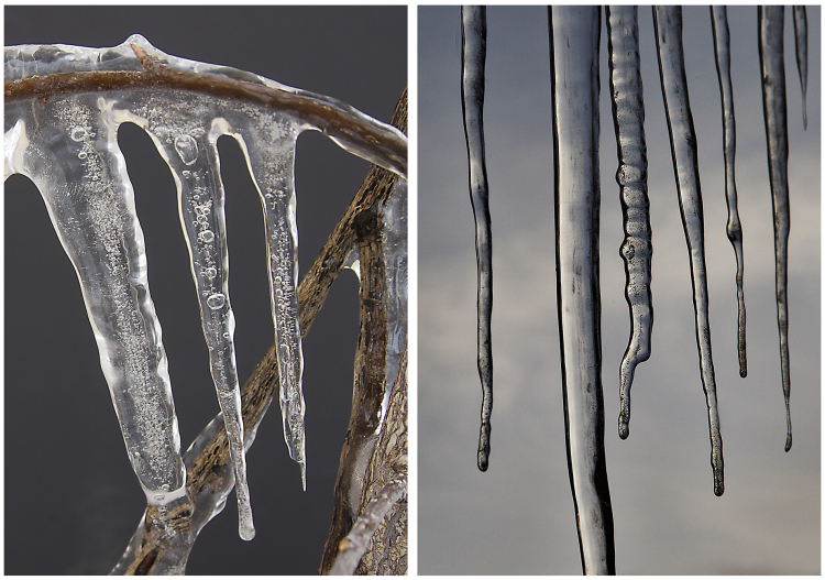 Icicles 3 (1)