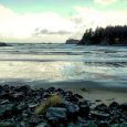 Sunset Bay and Cape Arago, Oregon