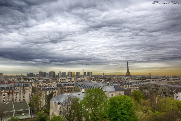 Undulatus_Paris_2 (8)