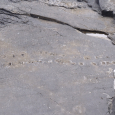 Tetrapod Tracks on Valentia Island