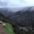 Fog Bank in Malibu Canyon