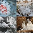Ice Crystal Collection from the French Alps