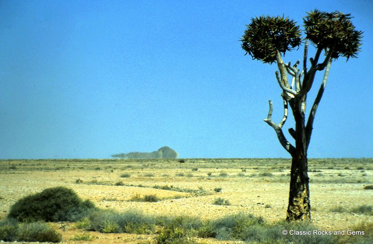 Quiver Tree and Mirage in the Namib Desert