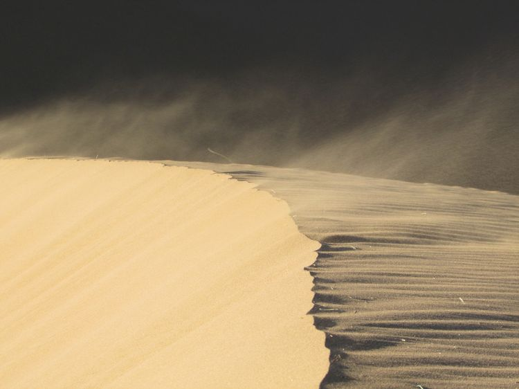 How Sand Dunes Form