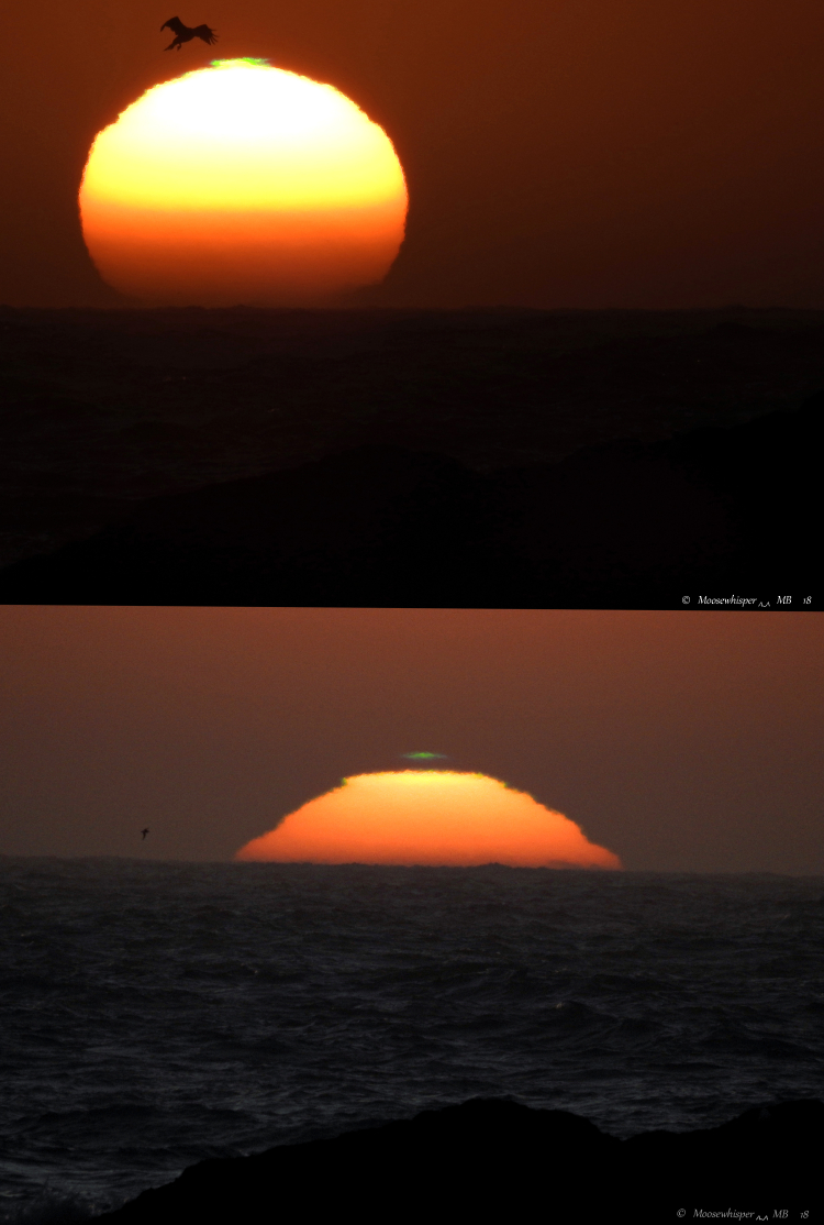Green Flash (1)