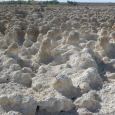 Salton Sea Salt Formations