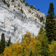 The White Cliff of Alta, with Autumn Gold