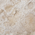 Travertine Fossil Leaves in the Getty Center