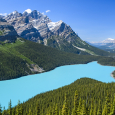 The Color of Peyto Lake