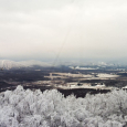 Snow and Rime in Canaan Valley, West Virginia
