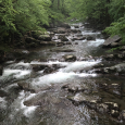 Big Creek in the Great Smoky Mountains