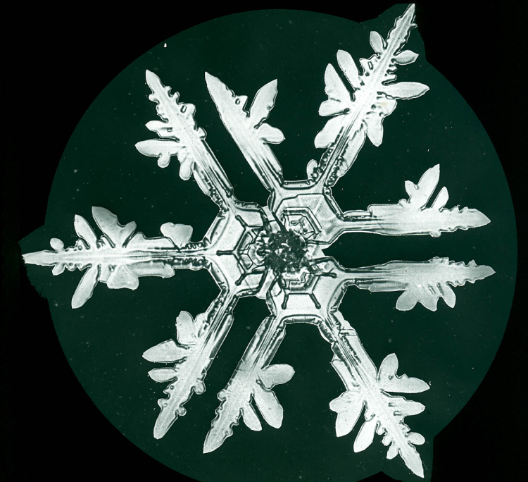 Not all Snow Crystals are Perfectly Symmetrical