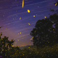 Fireflies and Star Trails in Italy
