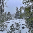 April Snow in Dolly Sods, West Virginia