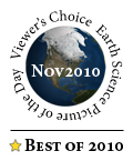 Voted Best of 2010
